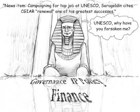 unesco job:
